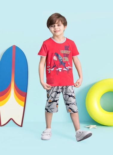 Roly Poly Rolypoly Cool Shark Erkek Çocuk Kapri Takım Kırmızı